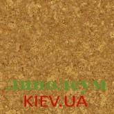 На фото Kyara 36M