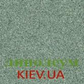 На фото 0623 Kiwi